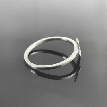 Flying Bird Ring-2
