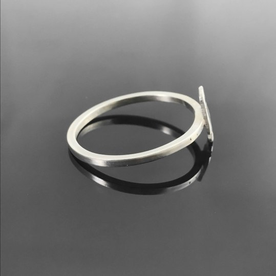 Penguin Ring-2